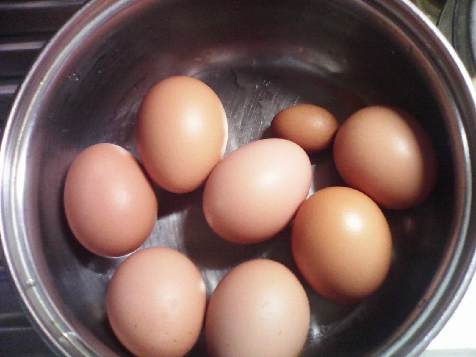 мини-яйцо куриное